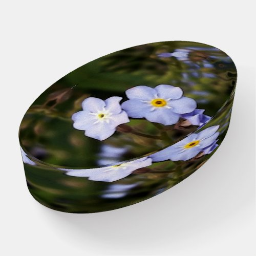 Forget me not flowers paperweight