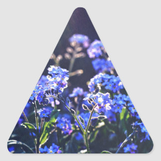 forget-me-not-flowers photographed by Tutti Triangle Sticker