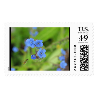 Forget Me Not For You Bee Included Postage