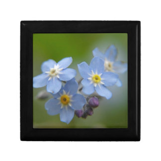 Forget Me Not Jewelry Box