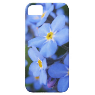 Forget-me-not iPhone SE/5/5s Case