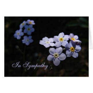 Forget Me Not ~ Sympathy Card