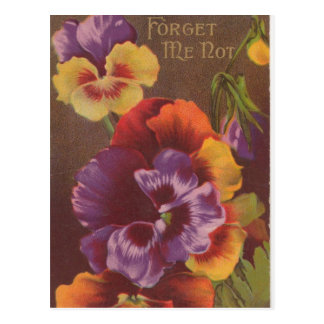 Forget Me Not Valentine Postcard