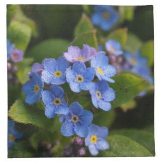 forget-me-not with dew macro cloth napkins