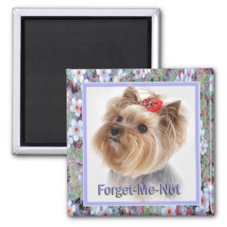 Forget Me Not Yorkie gifts 2 Inch Square Magnet