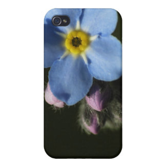 Forget-Me-Nots 1 iPhone 4/4S Case