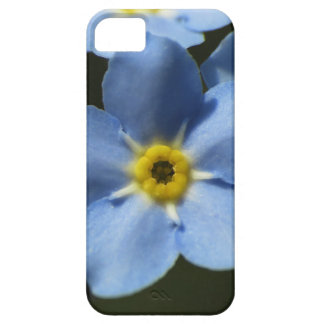 Forget-Me-Nots 1 iPhone 5 Case