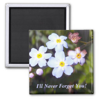 Forget Me Nots 1 Magnet