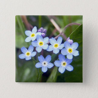 Forget Me Nots 2 Button