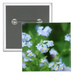 Forget Me Nots 2 Inch Square Button