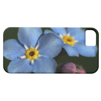 Forget-Me-Nots 3 iPhone 5 Case