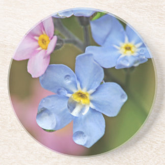 Forget-Me-Nots and Raindrops Macro Drink Coasters