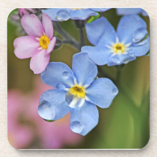 Forget-Me-Nots and Raindrops Macro Coasters