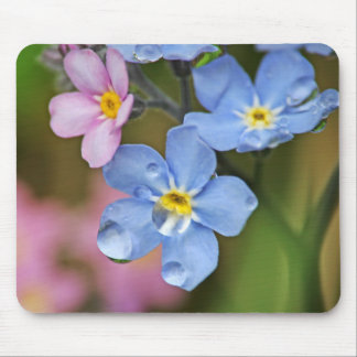 Forget-Me-Nots and Raindrops Macro Mouse Pad