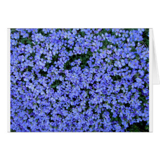 Forget Me Nots Card