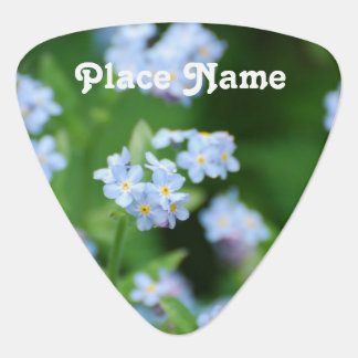 Forget Me Nots Pick