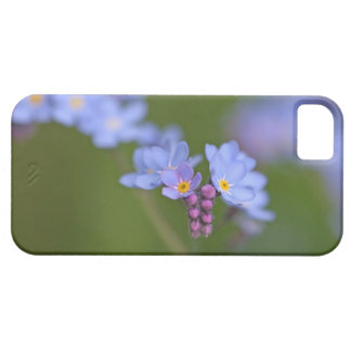 Forget Me Nots iPhone 5 Covers
