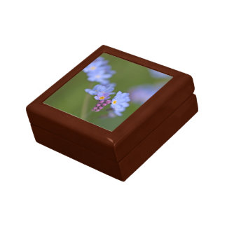Forget Me Nots Jewelry Box