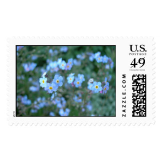 Forget Me Not's stamps