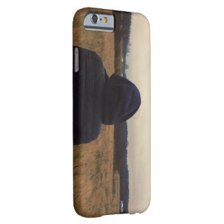 Forget Not Barely There iPhone 6 Case