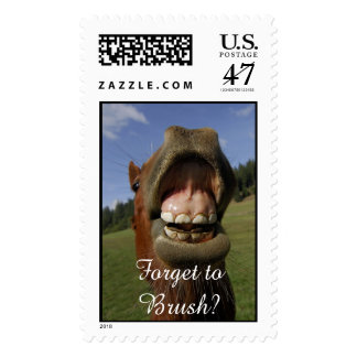 Forget to Brush? Funny Horse Postage Stamp