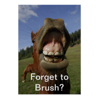 Forget to Brush? Poster
