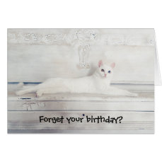 Forget Your Birthday? Kitty Cat Card