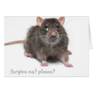 """Forgive me, please?"" Card"