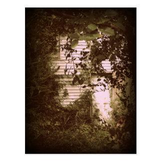 Forgotten Door Photo Postcard