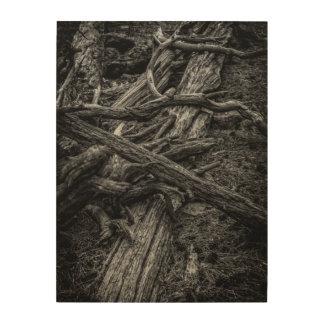 Forgotten Silence Wood Canvas