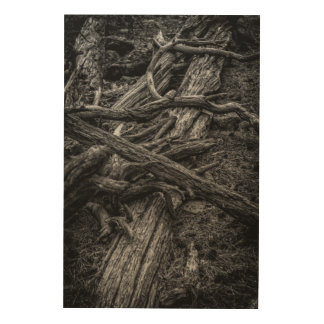 Forgotten Silence Wood Wall Decor