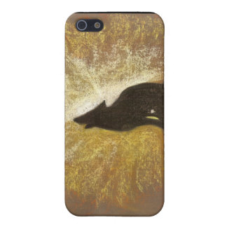 Forgotton Song iPhone 5 Cases