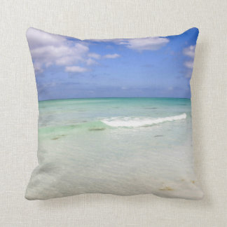 Forida Beach Pillow
