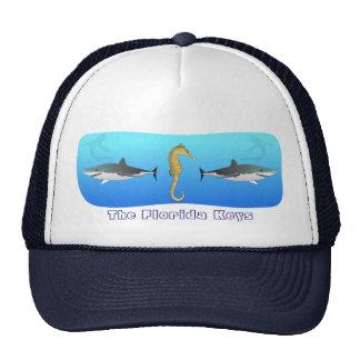 Forida cierra el gorra del tiburón y del Seahorse