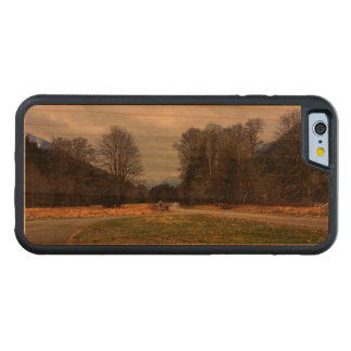 Fork in the Road Olympic National Park Carved Cherry iPhone 6 Bumper Case
