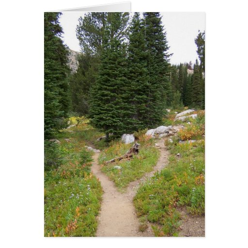 Fork in the Trail - Blue Lake, Cascade, ID #4091 Stationery Note Card