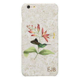 Fork Tailed Wood Nymph Hummingbird Monogram Glossy iPhone 6 Plus Case