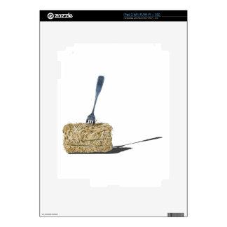 ForkInBaleOfHay061315.png iPad 2 Skin