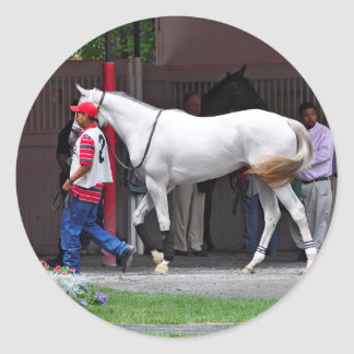 Form Fitting Filly by Tapit Classic Round Sticker