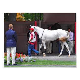 Form Fitting Filly by Tapit Photo Print