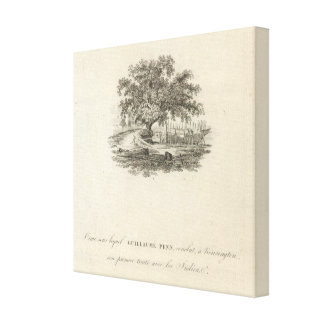 Form in which William Penn Canvas Print