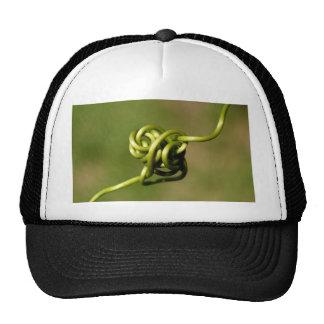 forma de la planta gorras