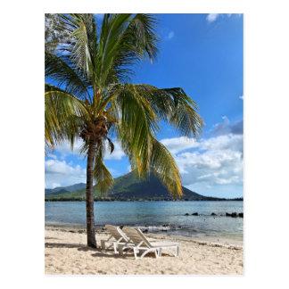 Forma de vida tropical de la isla tarjeta postal