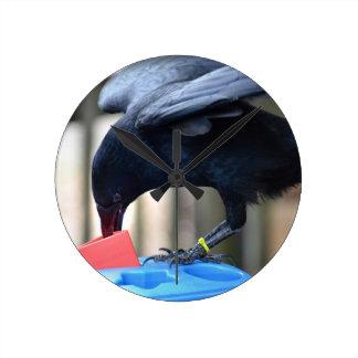 forma negra del cuervo que clasifica el juguete de reloj