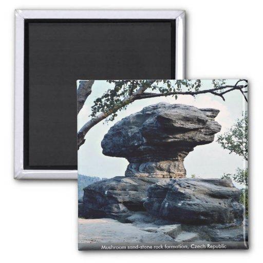 Formación de roca de la piedra arenisca de la seta iman de nevera