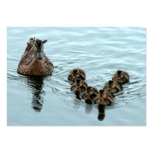 Formación del pato tarjeta personal