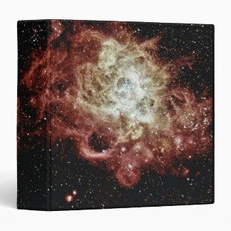 """Formación estelar carpeta 1 1/2"""""""