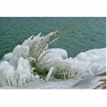 Formaciones de hielo esculturas fotograficas