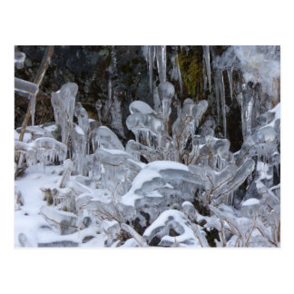 Formaciones de hielo, isla de Unalaska Tarjeta Postal