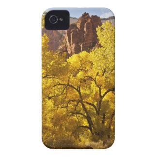 Formaciones de los cottonwoods y de roca del otoño iPhone 4 Case-Mate carcasas